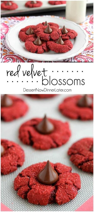 Valentines Day Treats: Red Velvet Blossoms